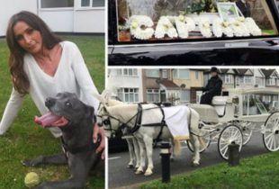 Potrošila 4.000 funti za sahranu psa